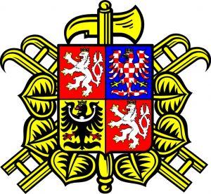 SDH Havlíčkova Borová